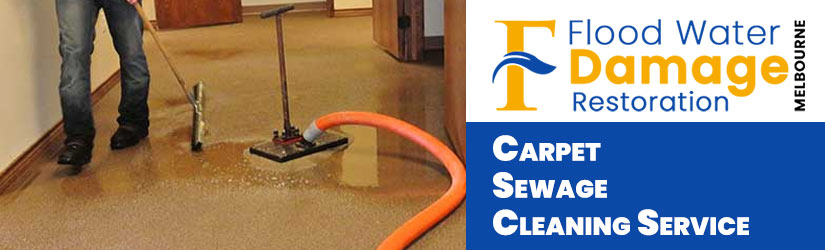 Carpet Sewage Cleaning Service Melbourne