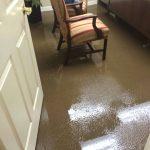 Same Day Carpet Flood Water Damage Restoration Melbourne