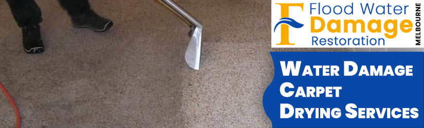Water Damage Carpet Drying Melbourne