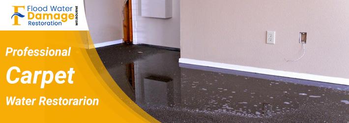 Professional Carpet Water Restoration