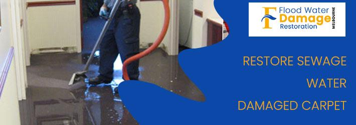 Restore Sewage Water Damaged Carpet